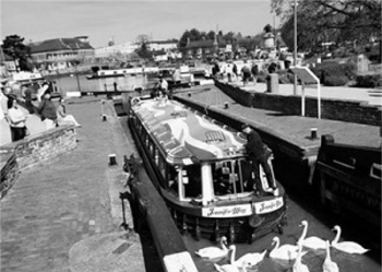 2583-Canal-and-River-Tours-Stratford-Upon-Avon1