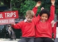 twycross-zoo-12